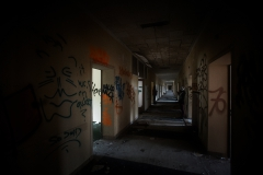Hitlerova nemocnoce