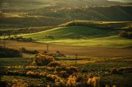 Žernosecké vinice - Porta Bohemica